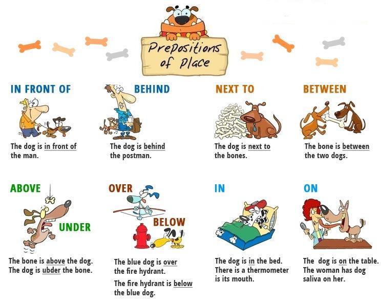 английский язык для начинающих предлоги