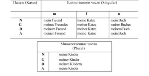 Притяжательные местоимения в немецком языке