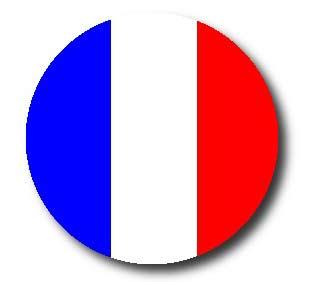 видеоуроки по французскому языку для начинающих